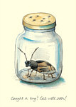Celia Biscoe: Caught a Bug