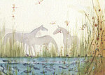 Fran Evans: Horses by the Pond