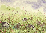 Fran Evans: A Day In The Meadow
