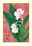 Yuko Hirose: Ginger Flower