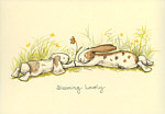 Anita Jeram: Blooming Lovely
