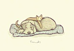 Anita Jeram: Friends Cat and Dog