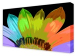 Canvas Art: Vibrant Petals